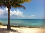 Grand Cayman: An Island to Love