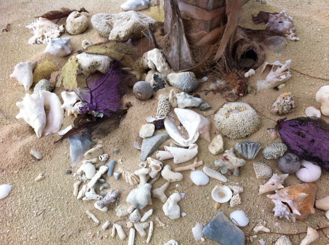 Treasures washed ashore.